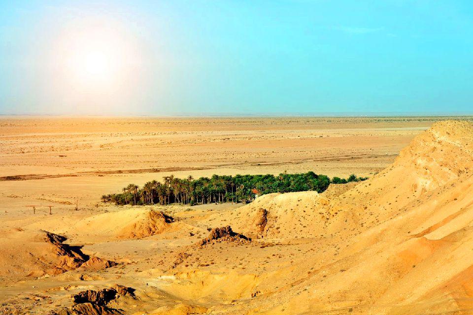 Le désert tunisien , Oasis au milieu du désert , Tunisie