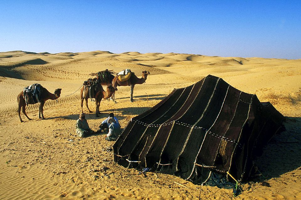 The desert , The Tunisian Sahara , Tunisia