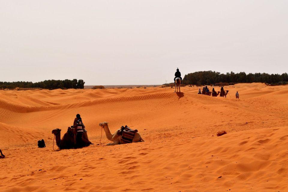 , L'oasis de Ksar Ghilane, Tataouine, Tunisie, afrique, maghreb, oasis, ksar