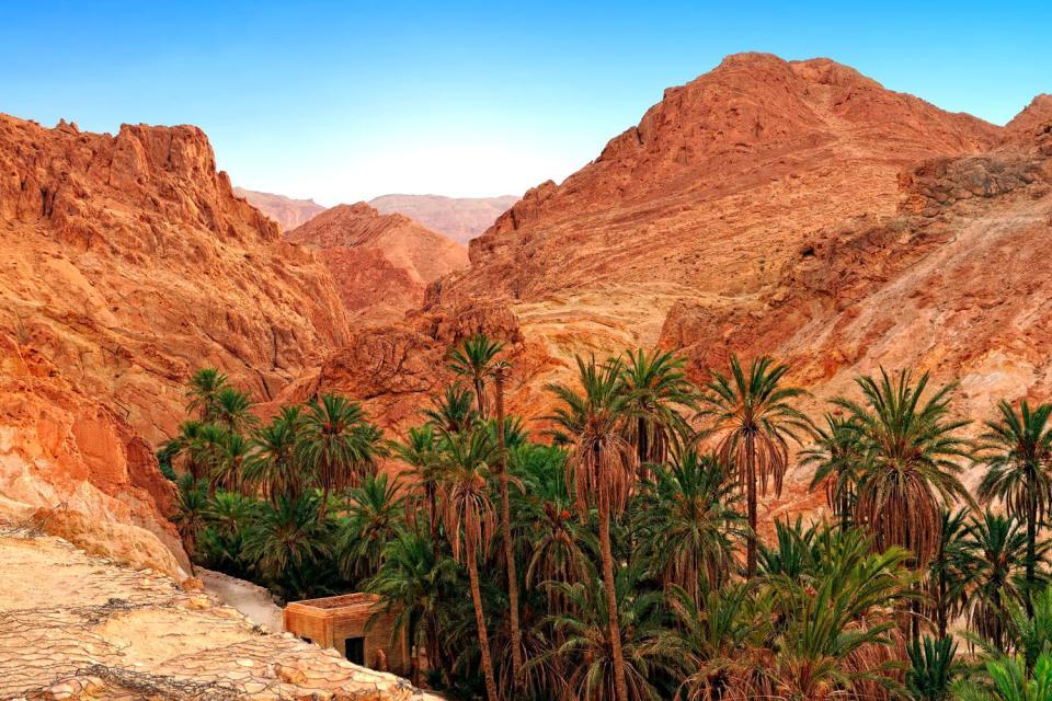 Le village de Chebika , L'oasis de Chebika , Tunisie