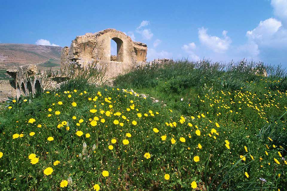 Bulla Regia , Tunisie