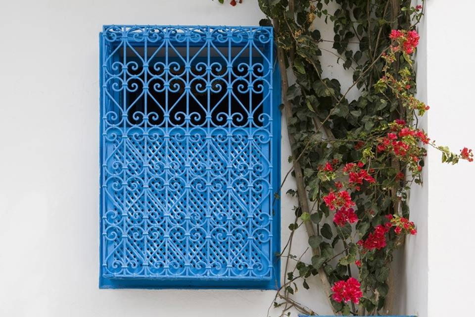 Cast iron grills , A blue wrought iron gate , Tunisia