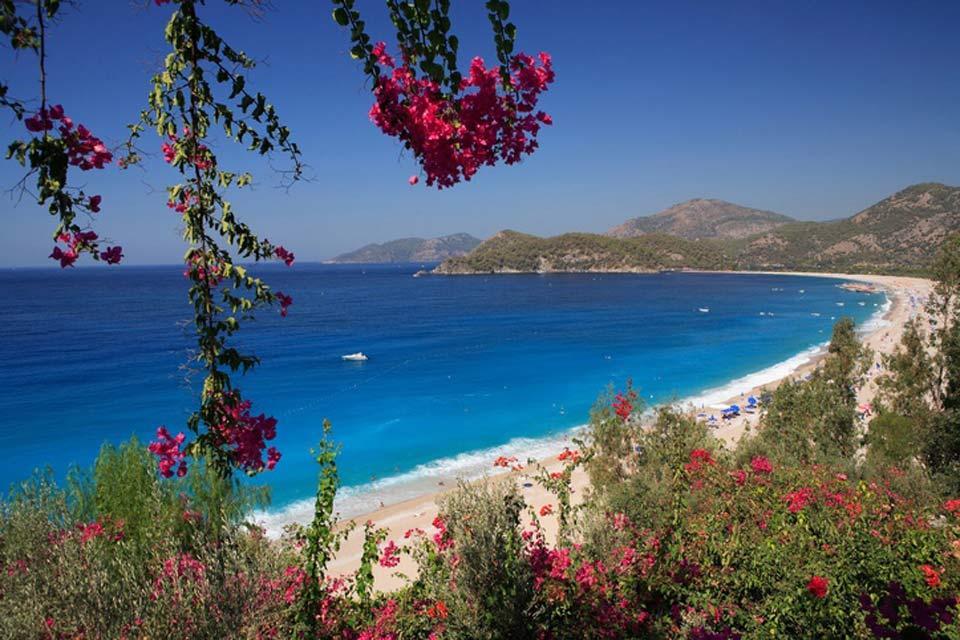La flora , La playa de Oludeniz , Turquía