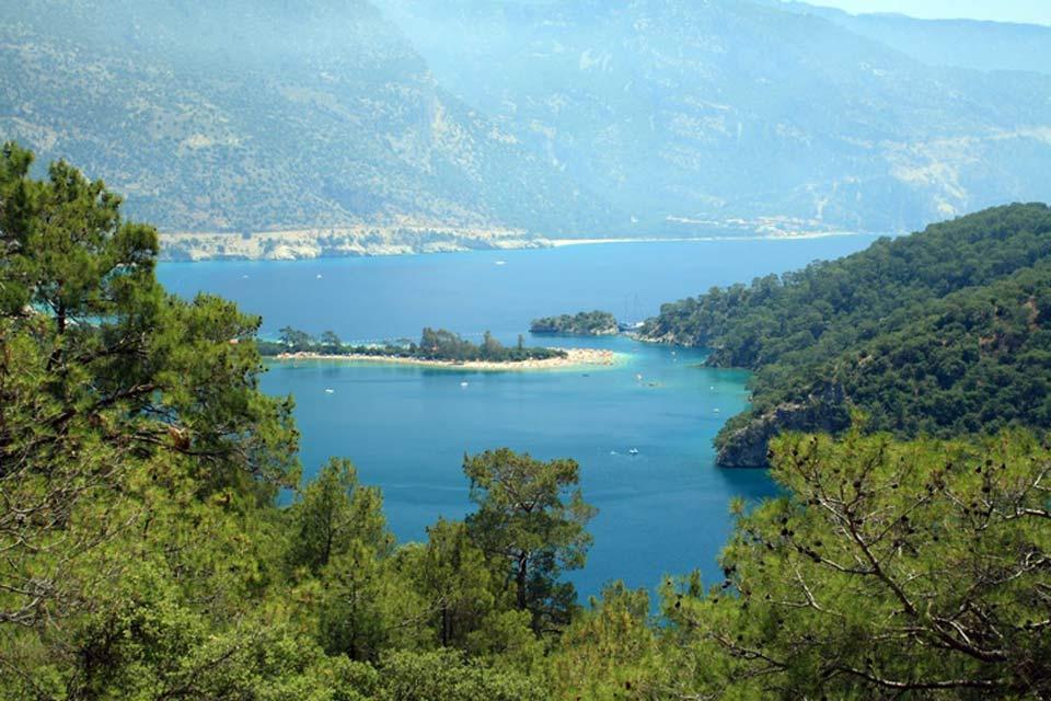 La flora , La costa del mar Negro , Turquía