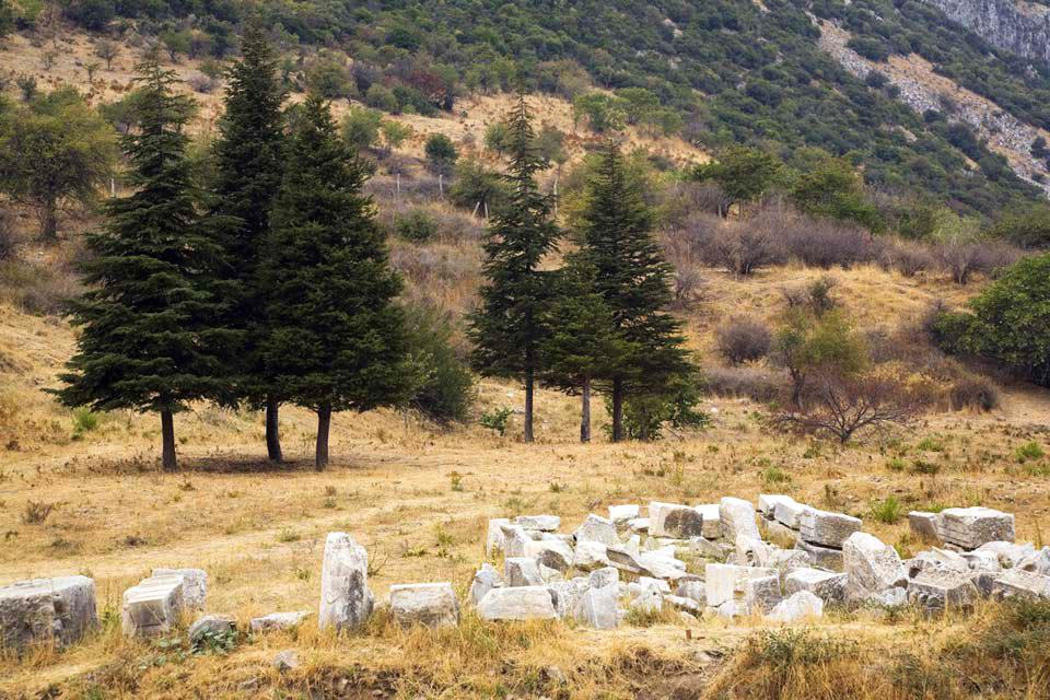 Ephèse et les sites archéologiques de l'Egée , Au naturel , Turquie