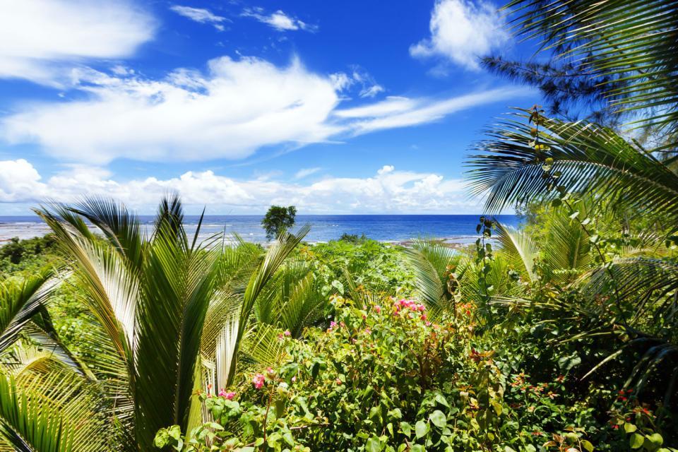 Santo , Mount Winbo , Vanuatu
