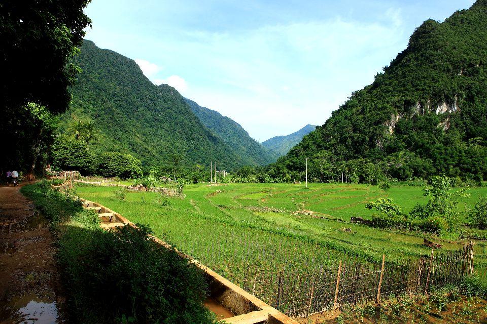Le Tonkin , Vietnam