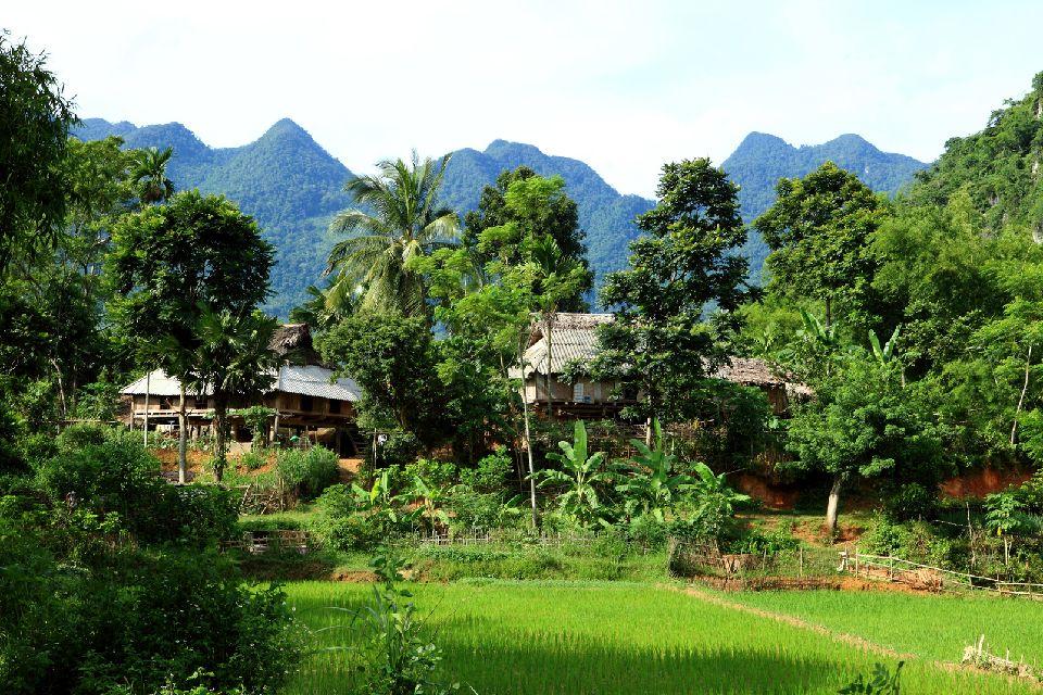 Tonkín , Vietnam
