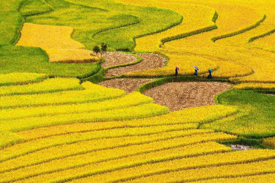 La cordillera de Truong Son en el Norte , Cordillera de Truong Son , Vietnam