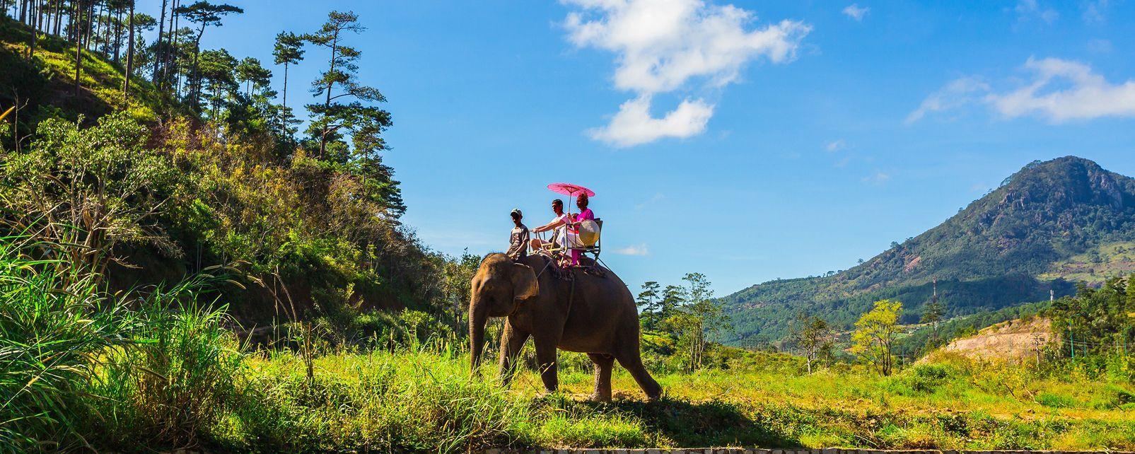 Les espèces en voie de disparition , Des espèces en voie de disparition , Vietnam
