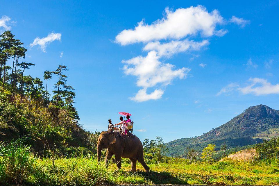 Las especies en vía de extinción , Especies en vías de extinción , Vietnam