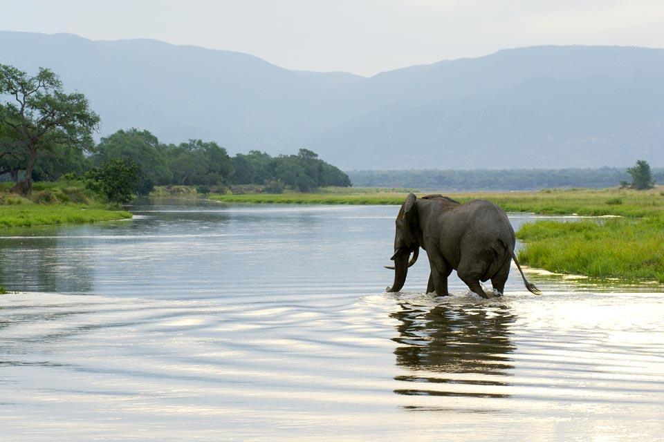 El río Zambeze , Zambia