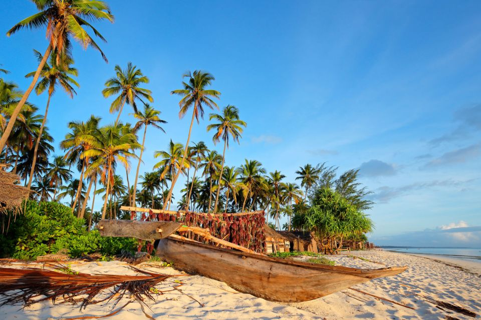 A typical house nestled in the forest of the , The north-west coast, Coasts, Zanzibar