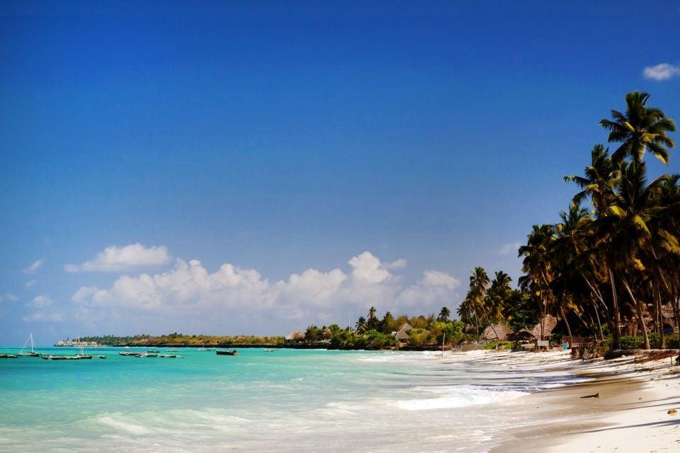 Les côtes, Tanzanie, Jambiani, Zanzibar, plage, afrique