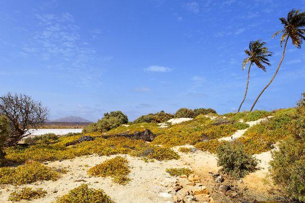 Insel Sal: Buracona , Curral Velho auf Boa Vista , Kap Verde