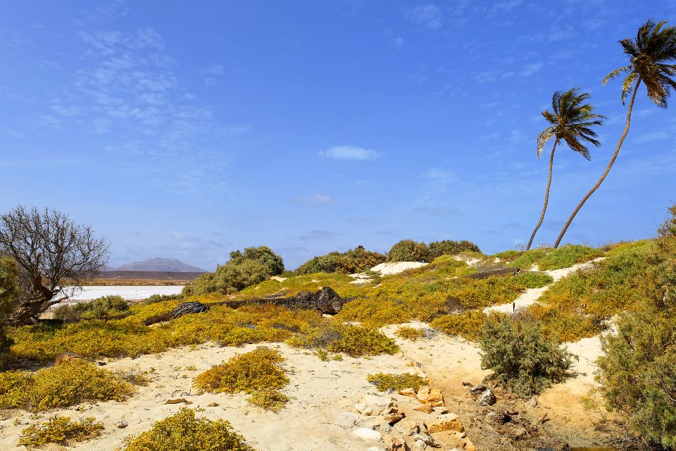 Isola di Sal: Buracona , Curral Velho a Boa Vista , Capo Verde
