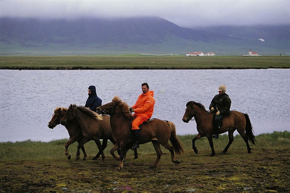 Equitation , Chevaux islandais , Islande
