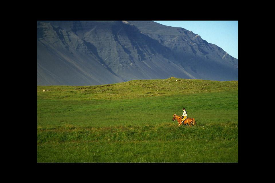 Horse-riding , Horse-riding in Iceland , Iceland