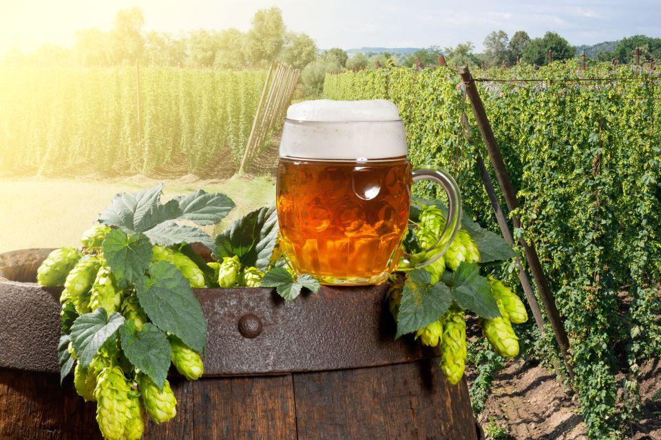 La bebida imprescindible de Bélgica, La cerveza, Ir de compras, Bélgica