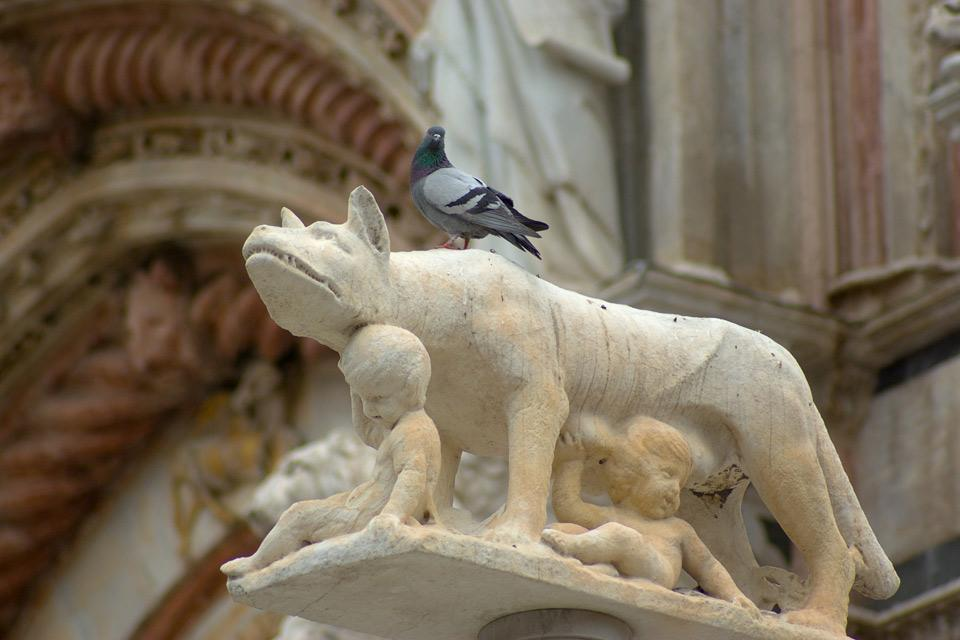Le marbre de Carrare , Détail de la cathédrale de Florence , Italie