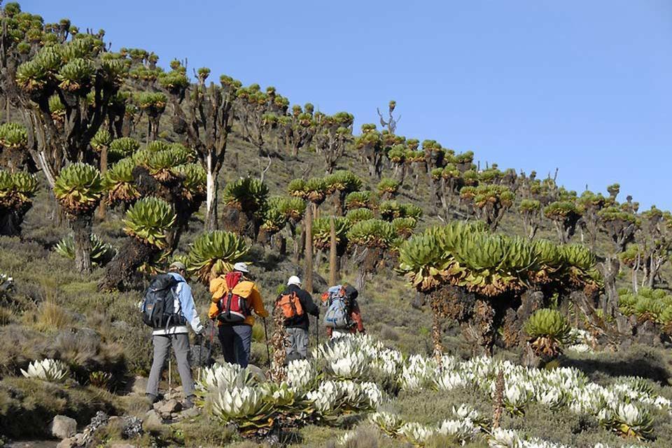 Il Monte Kenya , La traduzione del nome , Kenya