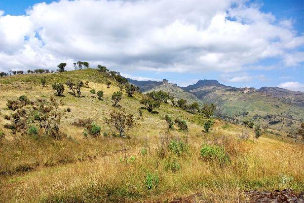 Mount Elgon , Safari to Mount Elgon , Kenya