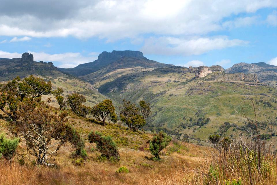 Mount Elgon , Kenya