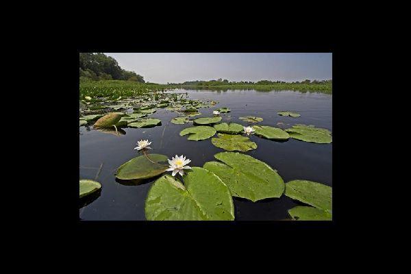 Natural reserves , Nature reserves , Serbia