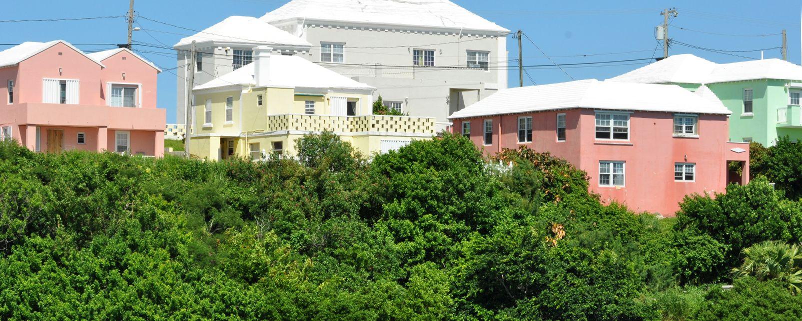 La exuberante vegetación , La iglesia de Saint George en las Bermudas , Bermudas
