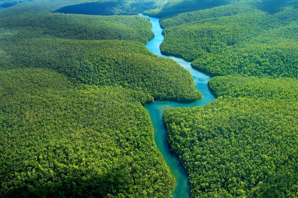 L'Amazonie , Une contrée pour les aventuriers ! , Brésil