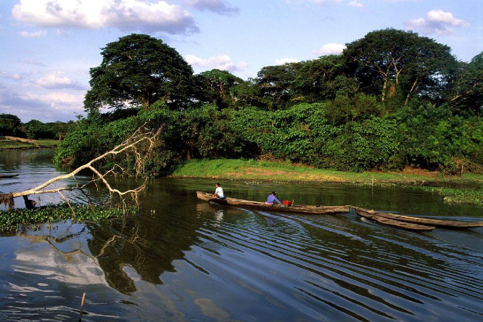 L'Amazonie , L'Amazone , Brésil