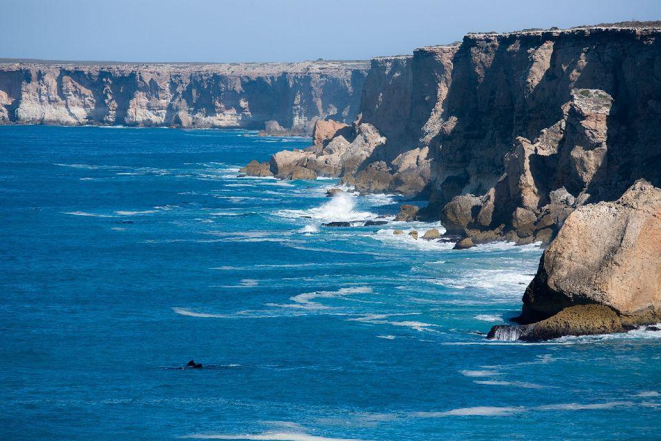 Le Parc Marin de la grande Baie Australienne , Les poissons d'Australie , Australie
