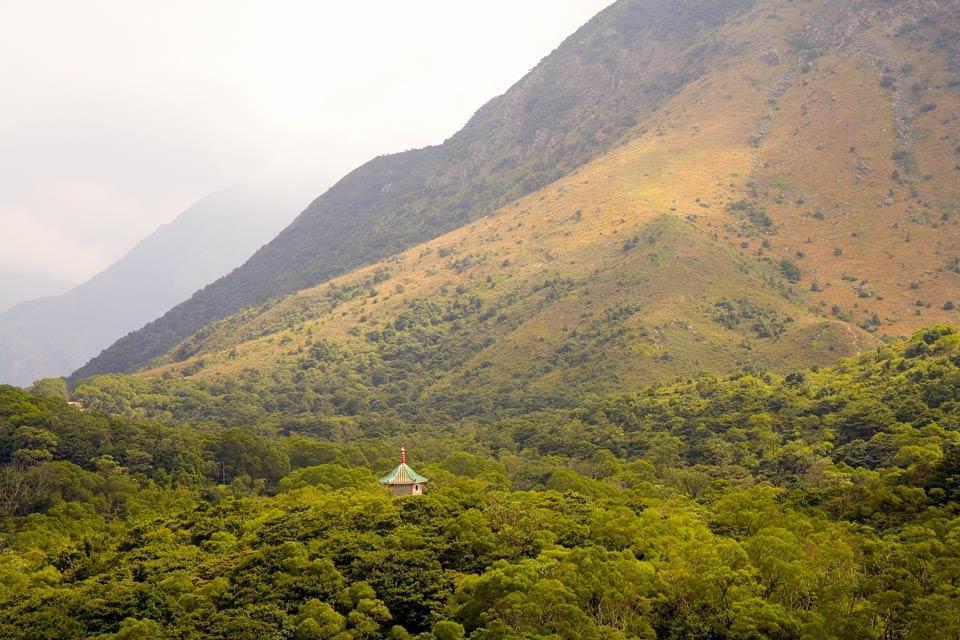La végétation tropicale , Une région montagneuse , Hong Kong