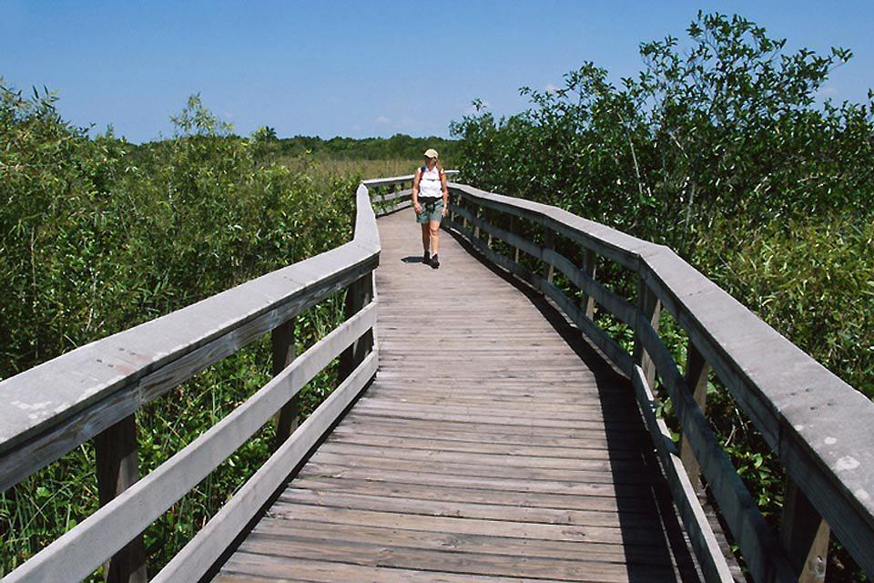 Le Parc national des Everglades , Lac du parc national des Everglades , Etats-Unis
