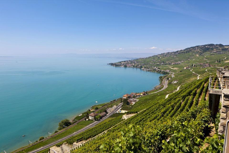 Der Kanton Waadt und die Region des Genfer Sees , Das Weinanbaugebiet von Lavaux , Schweiz
