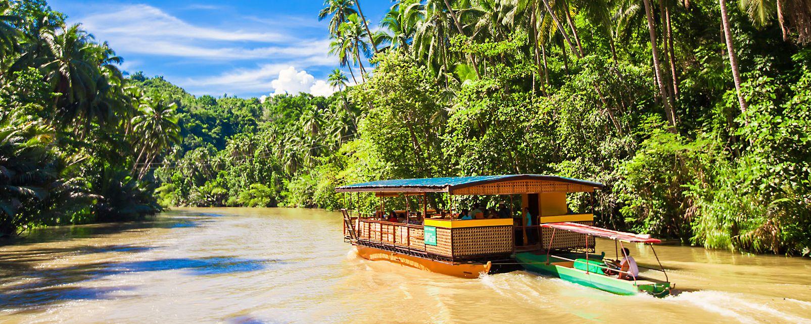 Les îles, Bohol, ile, asie, philippines, jungle