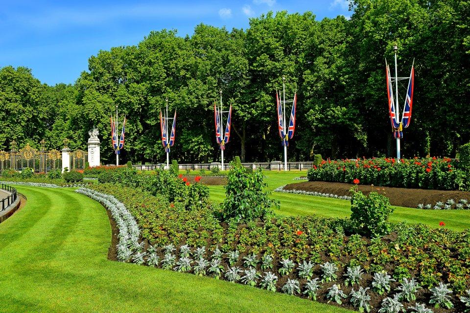Green Park, le parc chic de Londres , Fleurs de cerisiers à Green Park à Londres , Royaume-Uni
