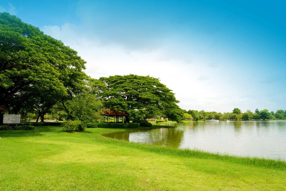 Green Park, le parc chic de Londres , Le lac de Green Park , Royaume-Uni