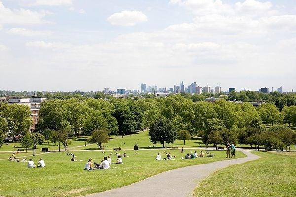 Primrose Hill, collina verde londinese , Primrose Hill, Londra, Inghilterra , Regno Unito