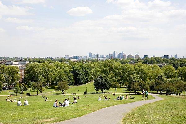 Primrose Hill, colline verte londonienne , Primrose Hill, Londres, Angleterre , Royaume-Uni