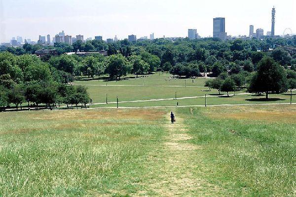 Primrose Hill, collina verde londinese , Paesaggio urbano, Primrose Hill, Londra , Regno Unito