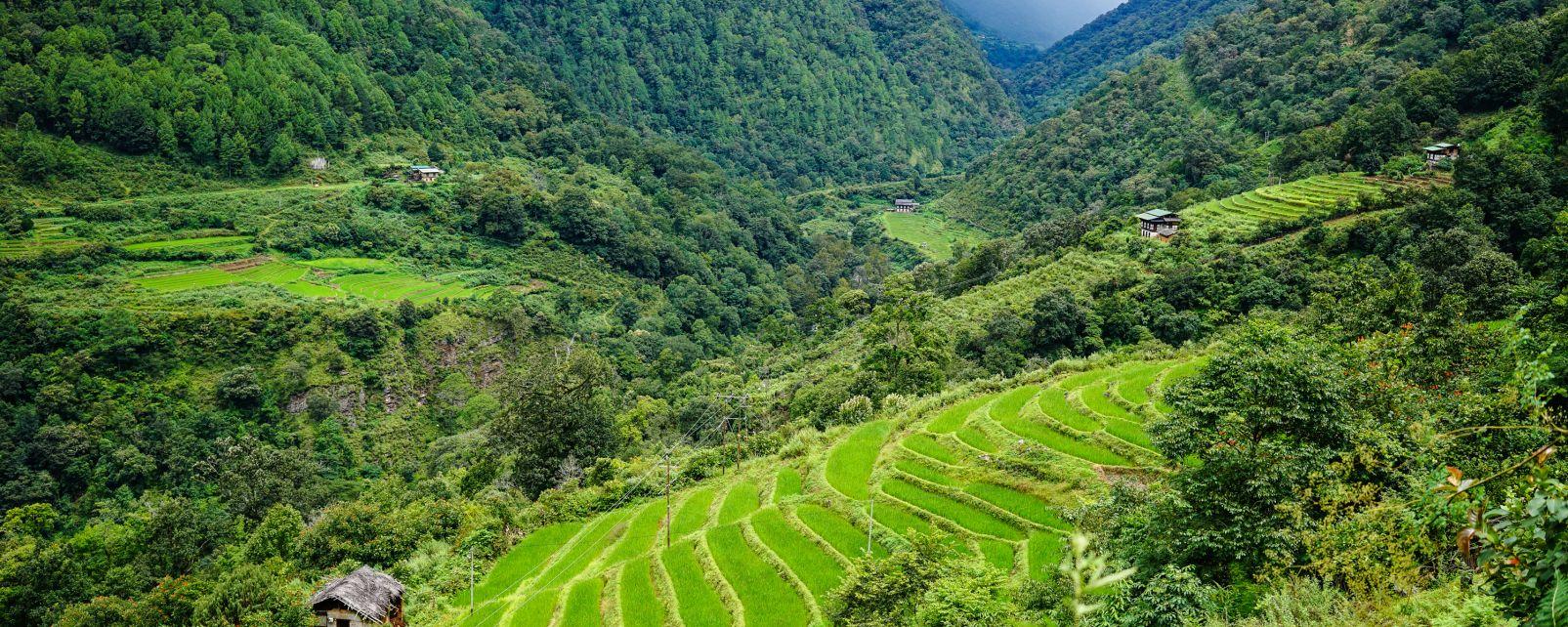 Le valli del centro, Le vallate del centro, I paesaggi, Bhutan