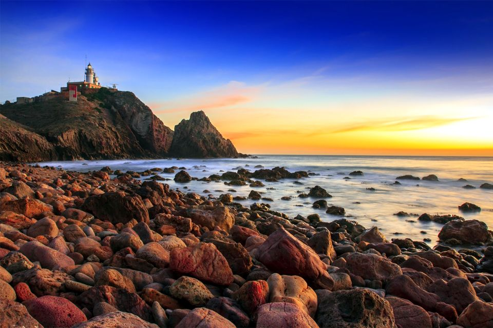 Cabo de Gata, Cabo de Gata- Níjar, Fauna y flora, Andalucía