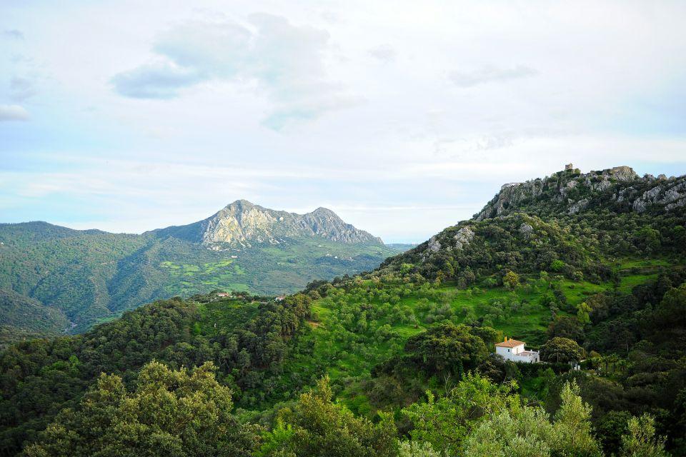 Las temperaturas, Los Alcornocales, Fauna y flora, Andalucía