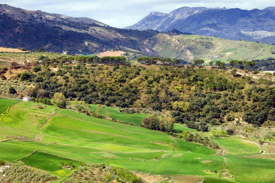 La ruta del Califato , Desde la ruta del Califato , España