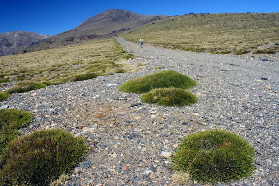 La Alpujarra , Desde la Sierra Nevada, La Alpujarra , España