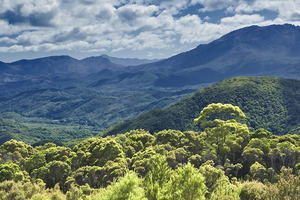 Die Wanderungen in Queensland , Australien