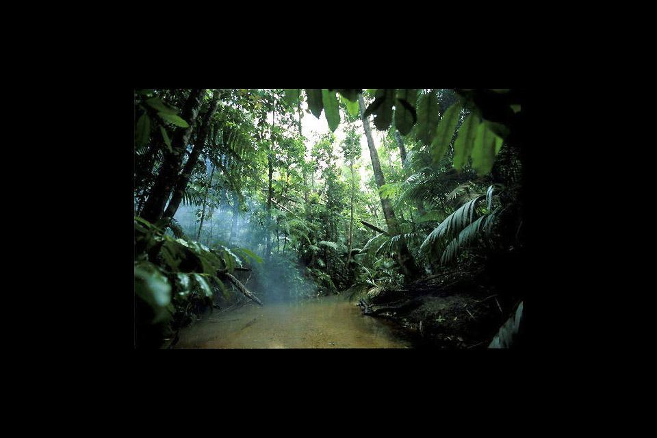 Die Wanderungen in Queensland , South East Queensland Country , Australien