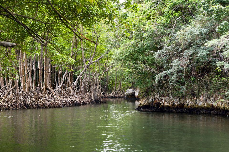 Los Haïtises, Los Haitises National Park, Landscapes, Samana, Dominican Republic
