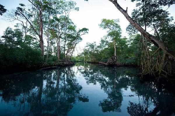 Der Nationalpark auf der Insel Cabritos , Dominikanische Republik